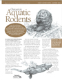Aquatic Rodents