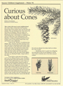 Cones and Conifers