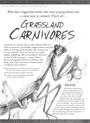 Grassland Carnivores