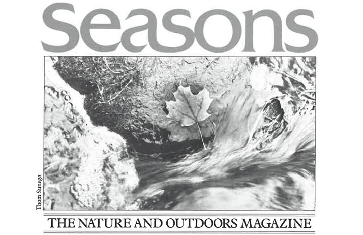 Seasons Autumn 1988