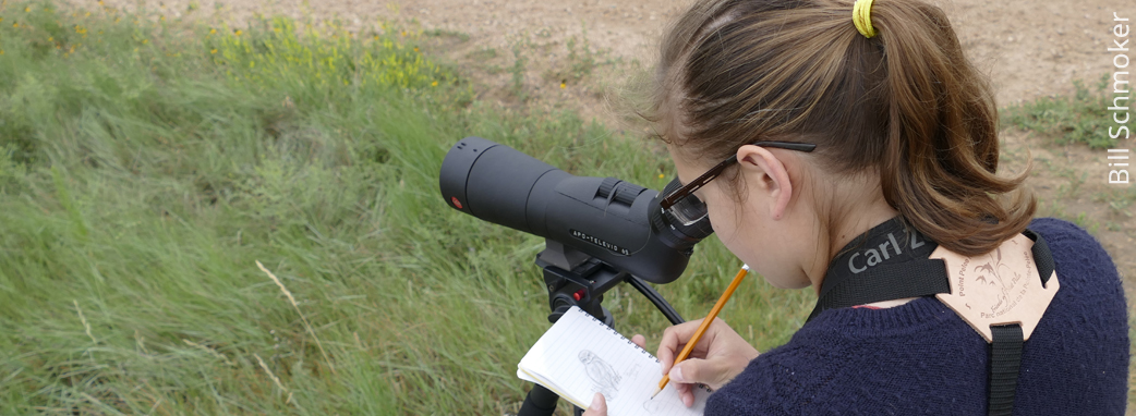 A birder to watch
