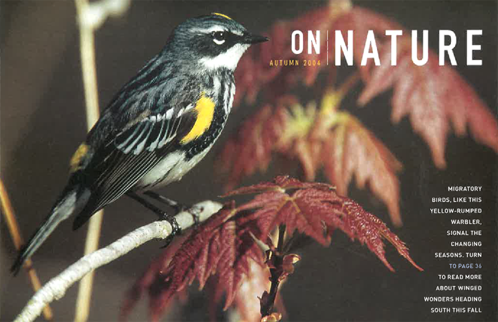 ON Nature Magazine Autumn 2004