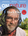 ON Nature Summer 2016 Cover blackflies