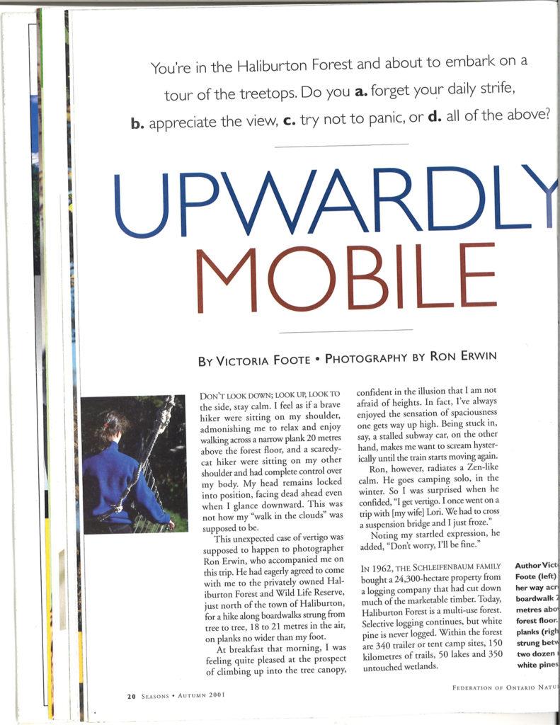 Upwardly Mobile Home Magazine
