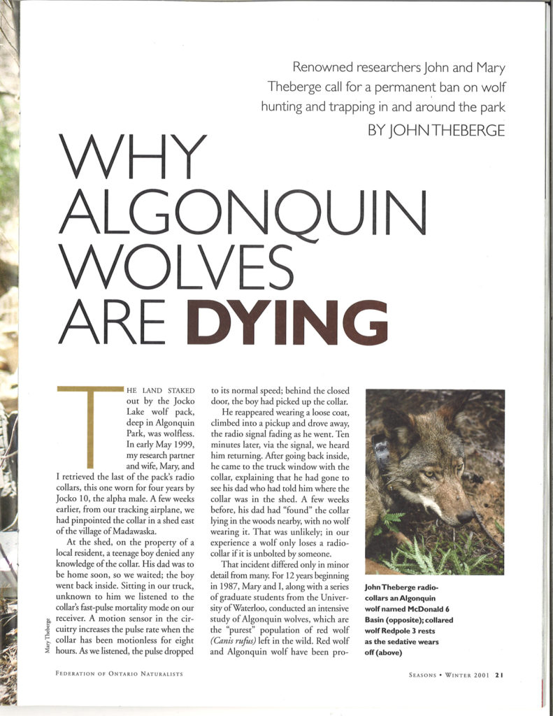 Seasons Winter 2001 Why Algonquin Wolves Are Dying