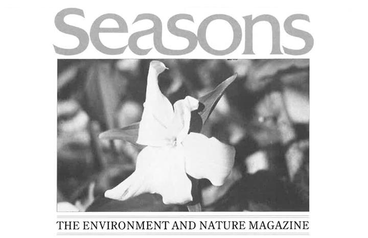 Seasons Spring 1989