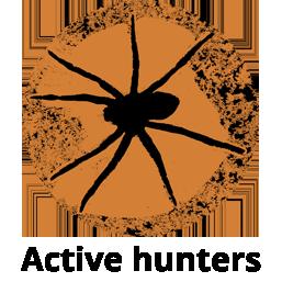striped-fishing-dock-spider-dan-schneider_cutout_v3