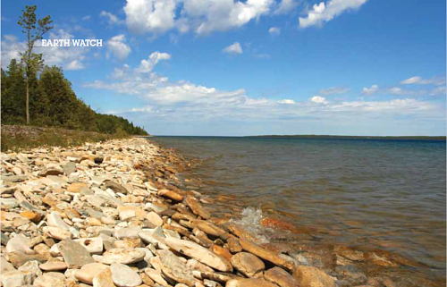 Stony beach at Malcolm Bluff Shores