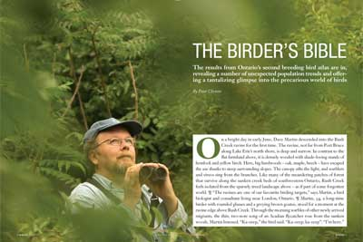The birder's bible