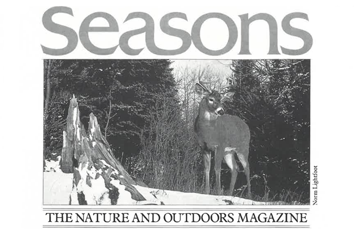 Seasons Winter 1988