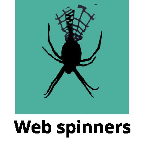 yellow-garden-spider-dan-schneider_cutout_v5