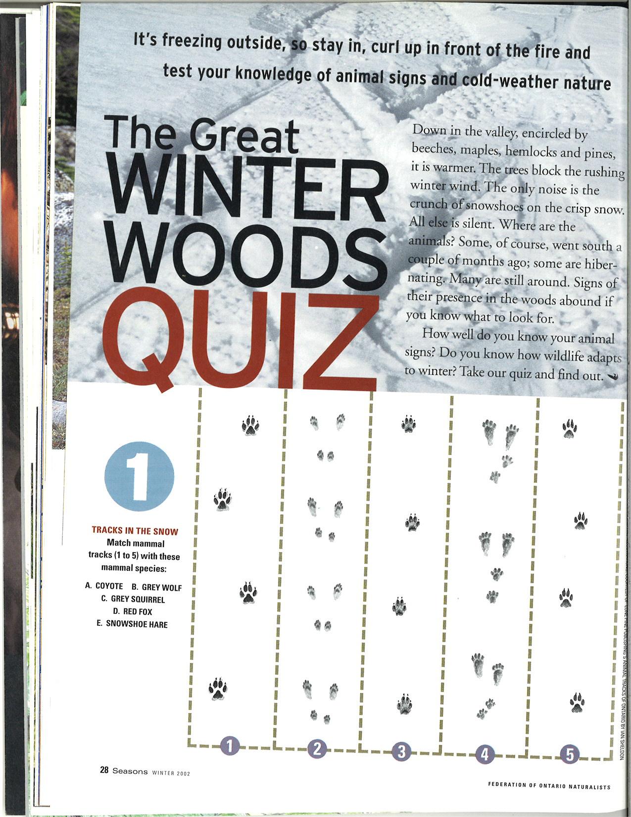 seasons_2002_v42_i4_f_The_great_winter_woods_quiz_28