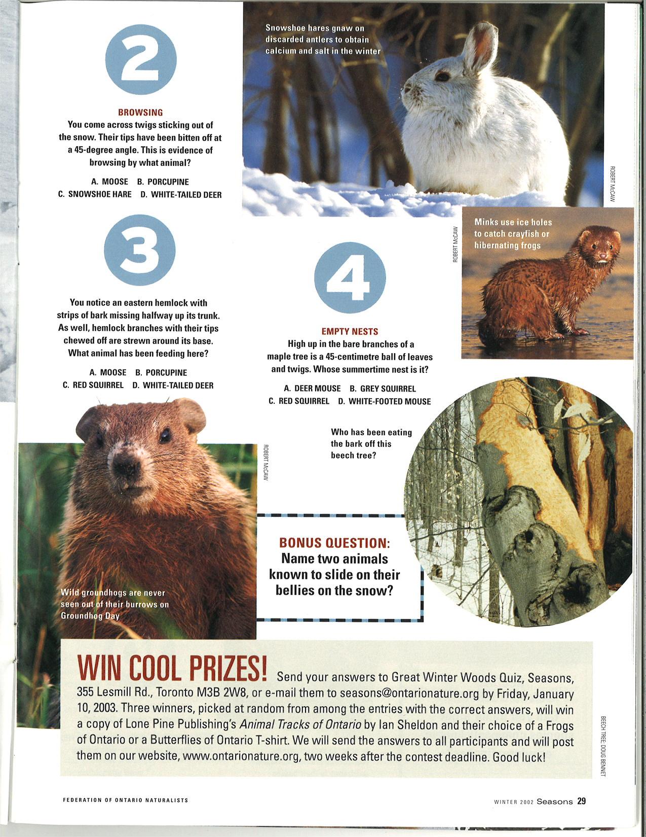seasons_2002_v42_i4_f_The_great_winter_woods_quiz_29