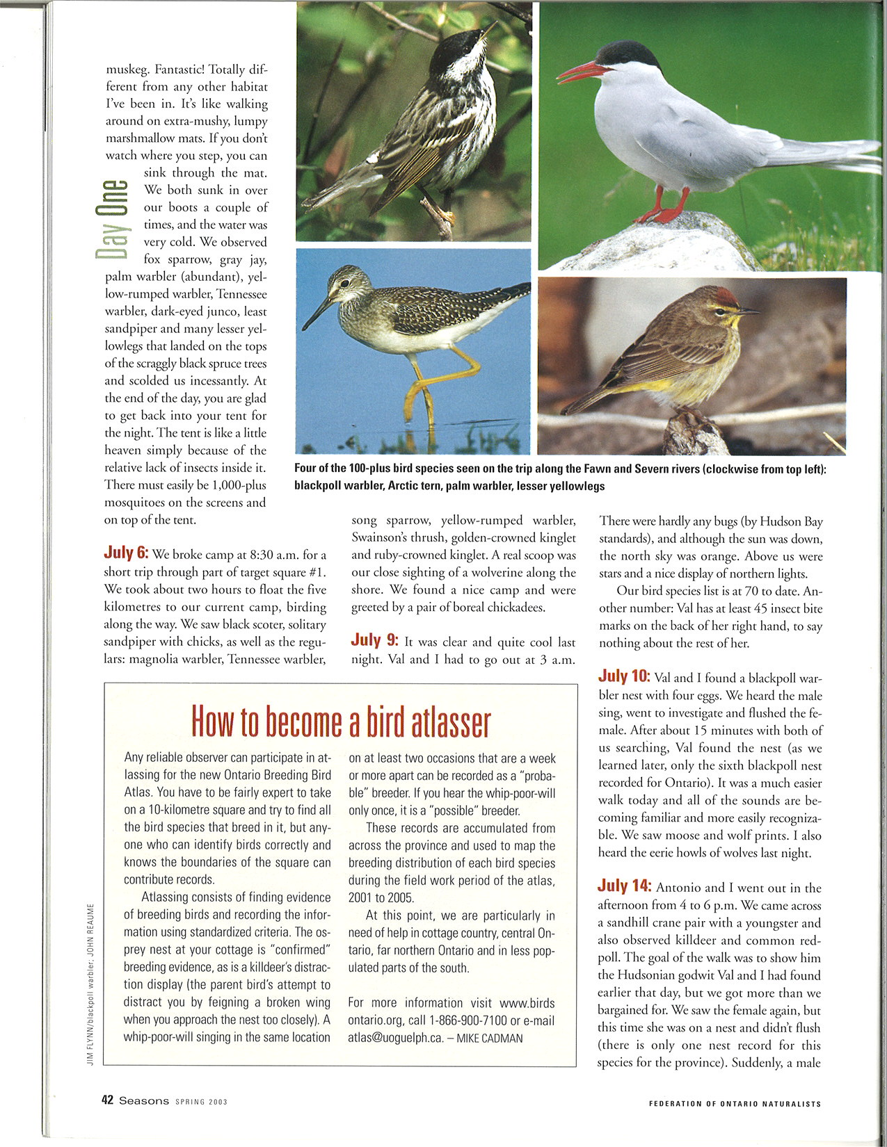 seasons_2003_v43_i1_d_Day_One_Birding_in_the_North_42