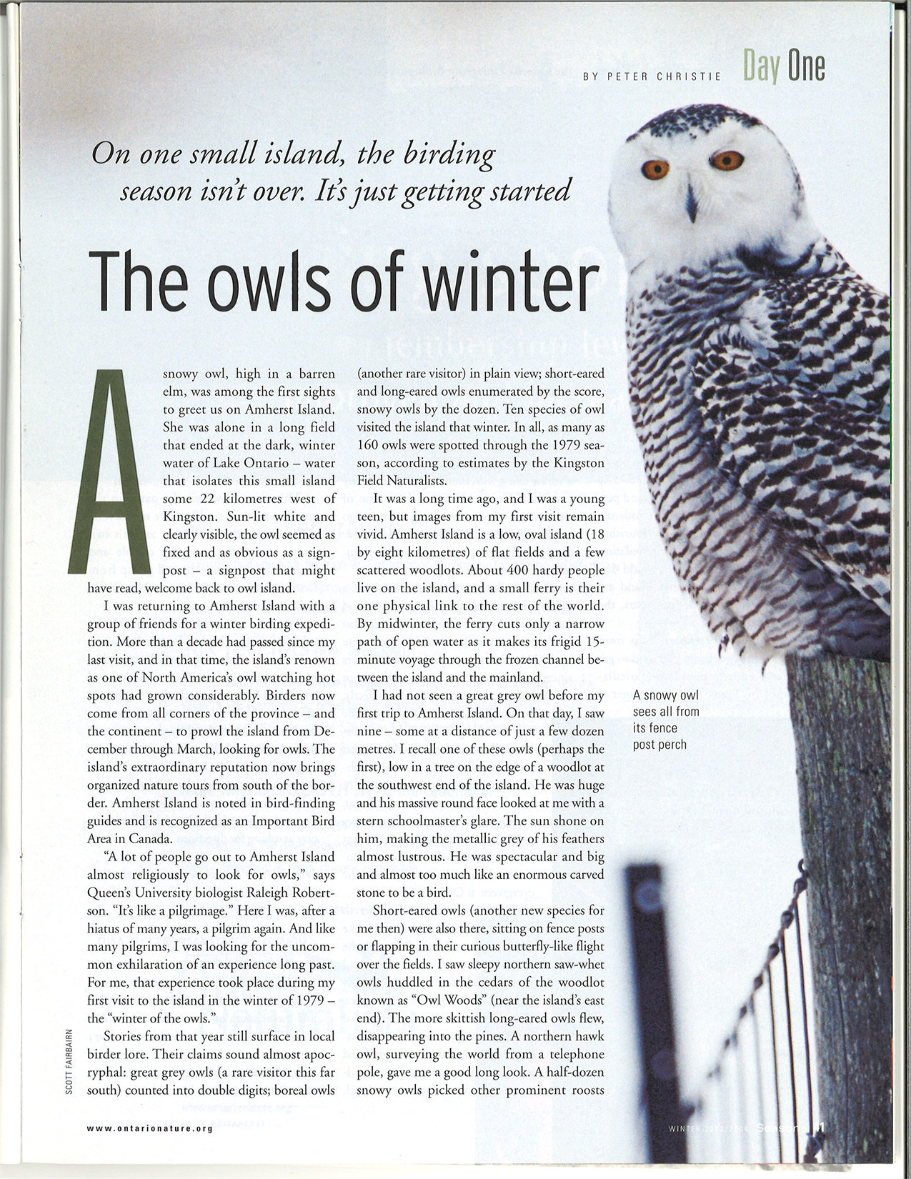 seasons_2003_v43_i4_d_Day_One_the_owls_of_winter_41