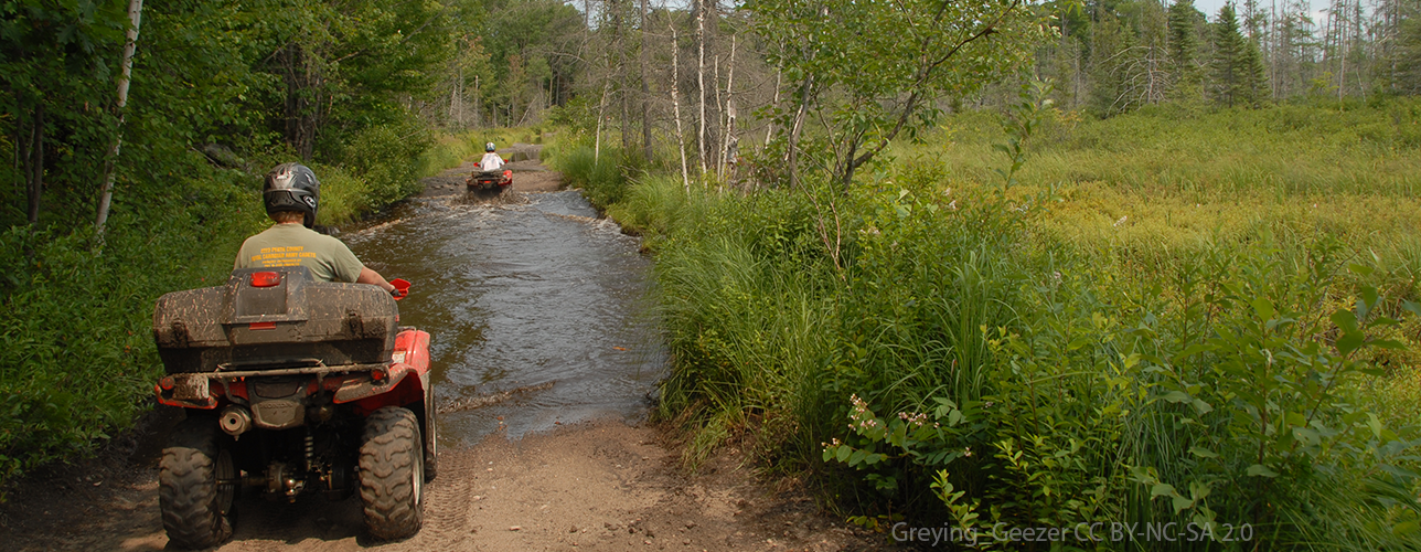 ATVs driving through wetland via trail