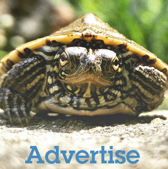 Advertise with ON Nature magazine (print or digital)