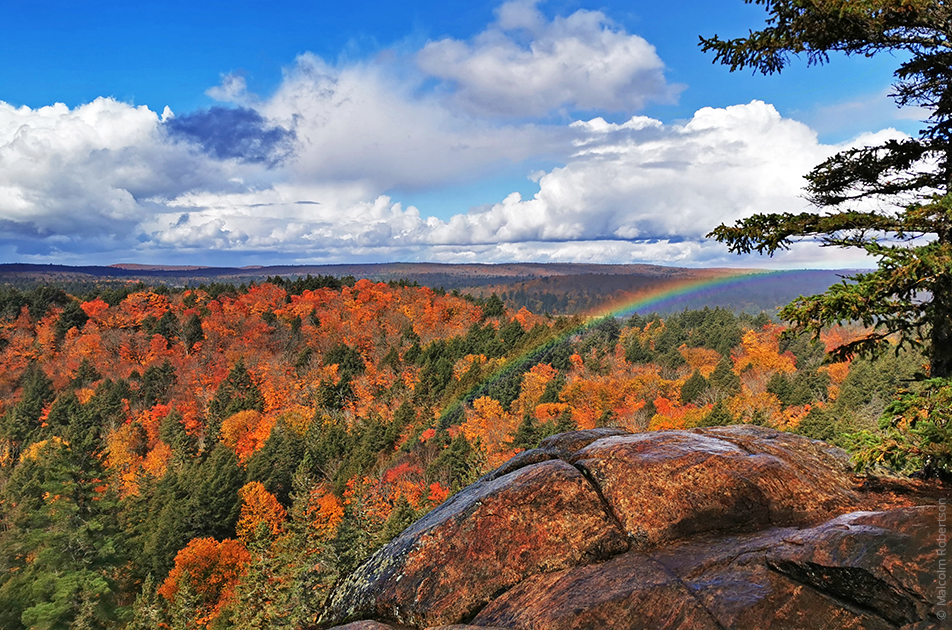 Algonquin lookout with rainbow and autumn forest