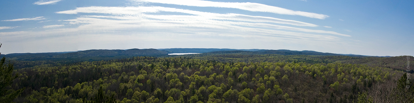Algonquin Provincial Park lakes and forest