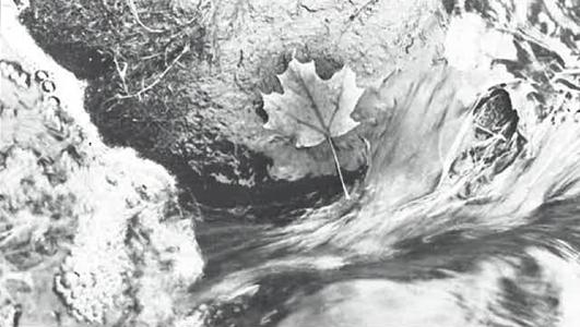 Seasons Magazine Autumn 1988