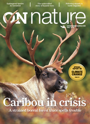 ON Nature Fall 2013 cover