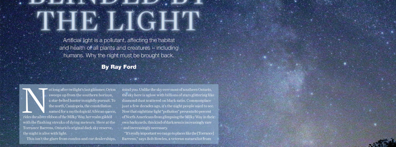 Light Pollution Feature Article Spread