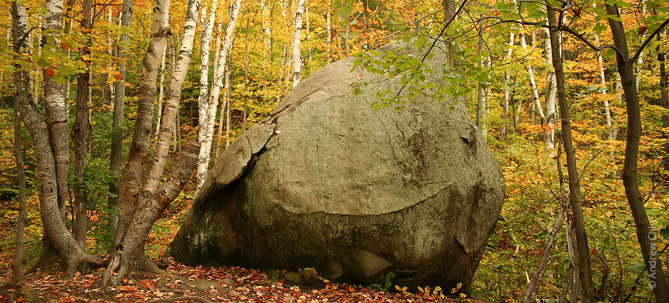 large boulder in an autumnal forest