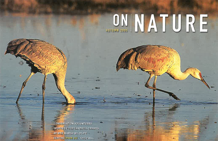 ON Nature Magazine Fall 2005