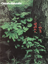 ON Nature Summer 1977 cover