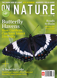 ON Nature Summer 2008 cover