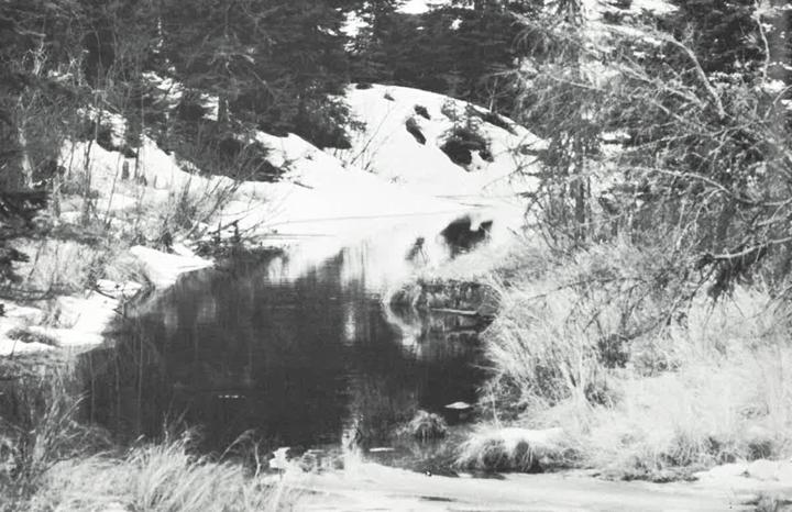 Ontario Naturalist Magazine March 1970