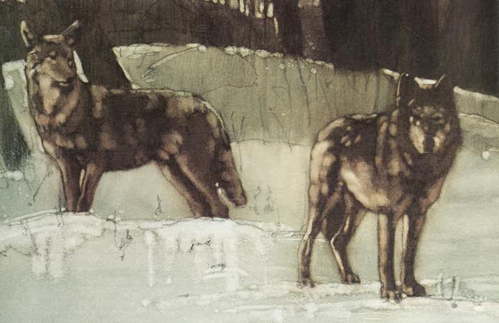 Ontario Naturalist Magazine Mid Winter 1979