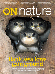 ON Nature Fall 2014 cover