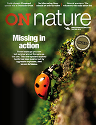 ON Nature Magazine Winter 2016 cover