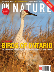 ON Nature Fall 2007 cover