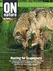 ON Nature Magazine Spring 2020 cover