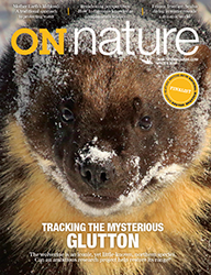 ON Nature Magazine Winter 2018 cover