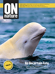 ON Nature Magazine Winter 2019 cover