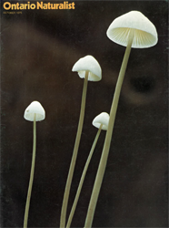 ON October 1975 cover