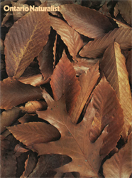 ON Nature Fall 1977 cover