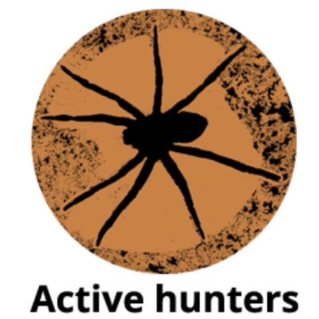 Active hunters title image