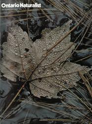 ON September 1976 cover