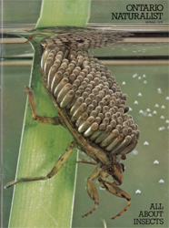 ON Nature Spring 1978 cover