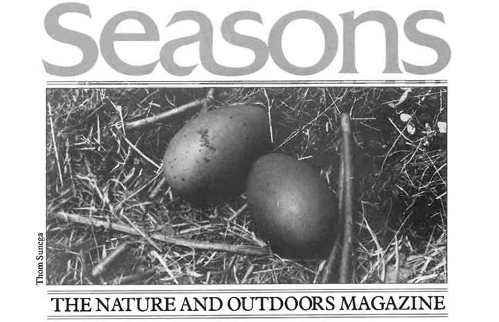 Seasons Spring 1988