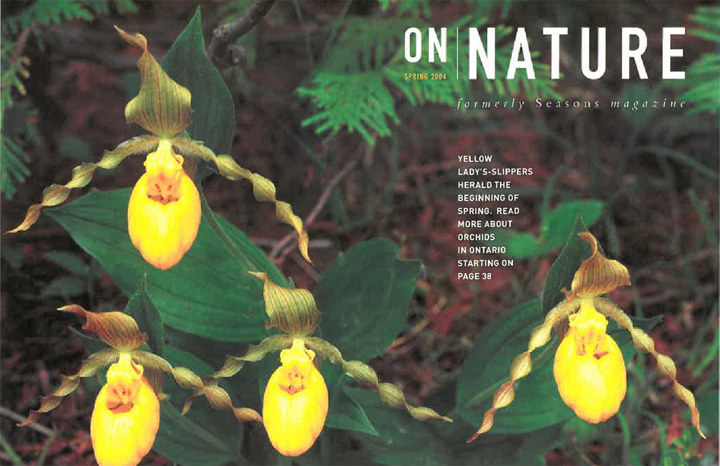 ON Nature Magazine Spring 2004
