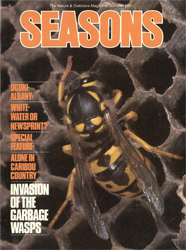 ON Nature Summer 1981 cover