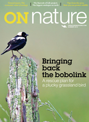 ON Nature Summer 2010 cover