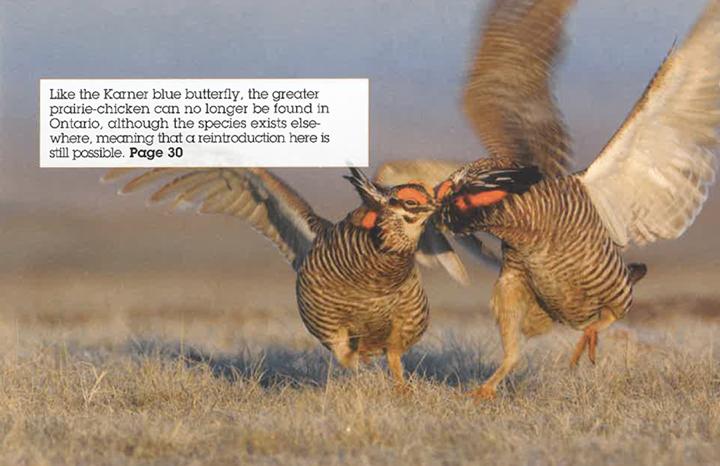 ON Nature Magazine Summer 2011