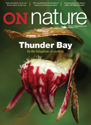 ON Nature Summer 2012 cover