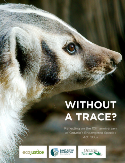 Without a Trace: Reflecting on the 10th Anniversary of Ontario's Endangered Species Act, 2007